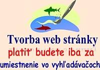 web 2a